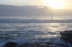 Ocean Waves Hammering Rock Boulder Stock Image