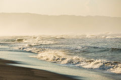 Ocean waves in the morning light Stock Images
