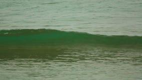 Ocean waves. Near tropical beach stock footage