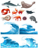 Ocean waves and sea animals Royalty Free Stock Image