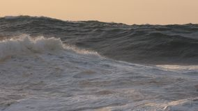 Ocean waves, sunset. Large open ocean storm surf rolls to shore at sunset, at Oahu's famous Pipeline surfing beach Stock Photography