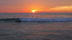 Ocean Waves Sunset Surfers stock video footage