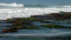 Ocean waves wash green seaweed and brown rocks on horizon