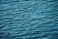 Ocean Stock Image