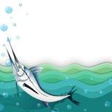 Ocean z dużą ryba Fotografia Stock