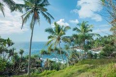 Ocean z zimnych wod fala i kokosowymi drzewami na zielonym wzgórzu Tropikalny krajobraz pod bielem chmurnieje przy pogodną pogodą Zdjęcia Royalty Free