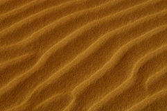 Oceana Sand Dunes Royalty Free Stock Image