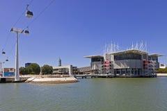 Oceanario de Lissabon/Oceanarium - Lissabon Royaltyfri Bild