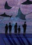 oceanarium的人们 夫妇,有观看鱼,鲨鱼,海生动物的孩子的人们 手拉五颜六色 向量例证