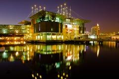 oceanarium νύχτας της Λισσαβώνας Στοκ Εικόνες
