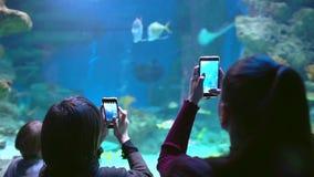 Oceanarium 女孩,男孩,人们,做照片和录影的游人的手,拍照片在智能手机,使用机动性 股票录像