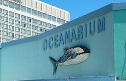 oceanarium Стоковое Изображение RF