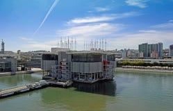 Oceanarium Stock Images