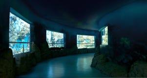 Oceanarium Stock Photography