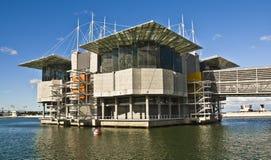 oceanarium de Lisbonne Images stock