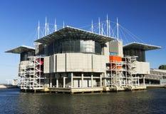 Oceanarium of Lisbon Stock Image
