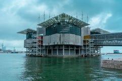 Oceanarium (Lisbon,Portugal) Royalty Free Stock Photo