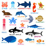 Oceanarium ocean animals and fishes with names Royalty Free Stock Image