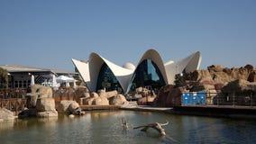 Oceanarium. `Oceanografic` in City of Arts and Sciences in Valencia Royalty Free Stock Photos