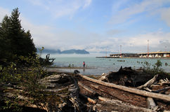 Oceanfront Interpretive Trail in Squamish, British Columbia, Canada Royalty Free Stock Photography