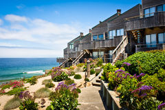 Oceanfront Townhomes. A row of oceanfront townhomes adjacent to a landscaped sand dune Stock Images