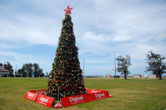 Oceania christmas tree Royalty Free Stock Photos