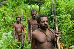 Oceania, Indonesia, Irian Jaya. Korowai tribe. Stock Photo