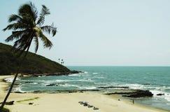Oceanic beach. Beach on the Indian ocean stock photos