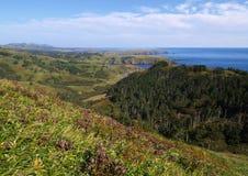 Oceanic kust Royalty-vrije Stock Fotografie