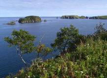 Oceanic landscape Stock Photos