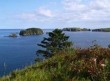 Oceanic landscape Stock Image
