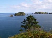 Oceanic landschap Royalty-vrije Stock Foto's