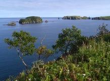 Oceanic landschap Stock Foto's