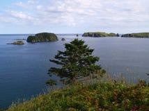 Oceanic landschap Royalty-vrije Stock Fotografie