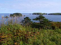 Oceanic landschap Stock Fotografie