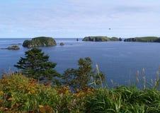 Oceanic landschap Royalty-vrije Stock Afbeeldingen