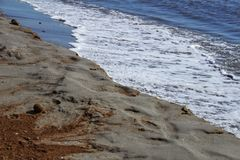 Oceanic Posidonia remains on the shore. After the storm in Santa Pola, Spain Stock Images