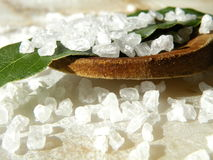 Oceanic salt with wooden spoon Stock Photography