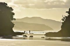 Oceanic strand in heldere backlight Royalty-vrije Stock Foto's