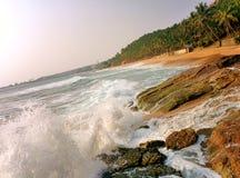 Oceaniczny wybrzeże z dużymi drzewkami palmowymi i fala Zdjęcia Royalty Free