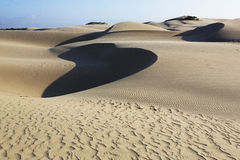 Oceano沙丘自然蜜饯,加利福尼亚 免版税库存图片