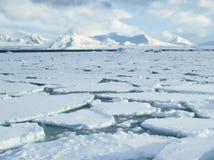 Oceano ártico - gelo de bloco na superfície do mar Fotos de Stock Royalty Free
