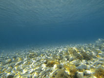Oceano Fotos de Stock