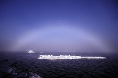 Oceano artico Immagine Stock