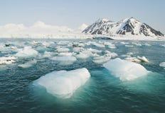 Oceano artico - ghiaccio nel mare Immagini Stock Libere da Diritti