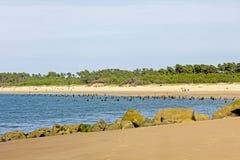 Oceano Atlântico, nuvens, oleron, Oceano Atlântico Fort Boyard, tempestade, pássaros, farol imagem de stock royalty free