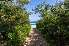 Oceano azul estreito de Bush do trajeto de passeio da praia fotos de stock