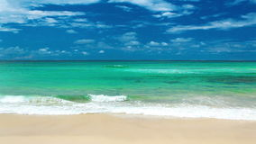 Oceano com as ondas na praia Austrália de Gold Coast vídeos de arquivo