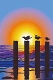 Oceano con gli uccelli Fotografia Stock