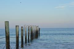 Oceano con gli uccelli sulle poste Fotografia Stock